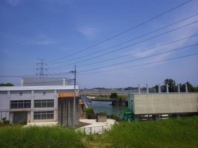 IMGP6018.jpg