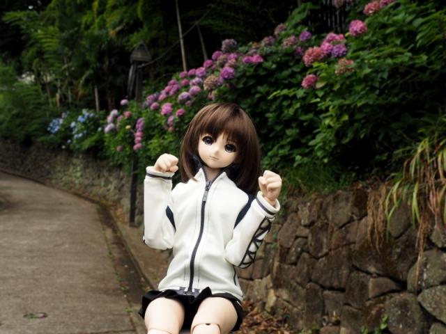 sumako41.jpg