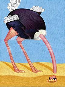 砂漠のダチョウ