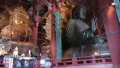 東大寺と鹿 046