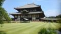 東大寺と鹿 052