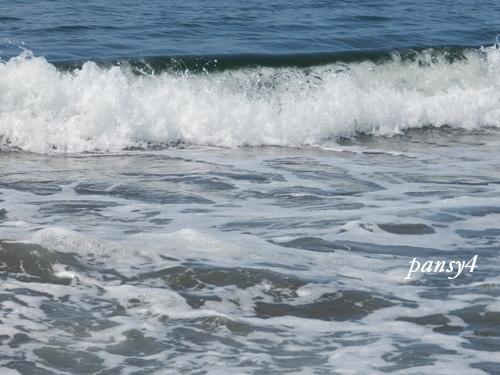 臼谷海水浴場