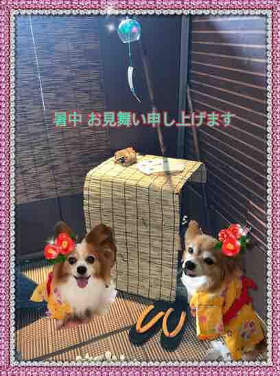 fc2blog_201707312052020a5.jpg
