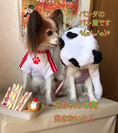 fc2blog_2017091818322619a.jpg