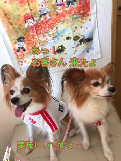 fc2blog_20170918183331907.jpg