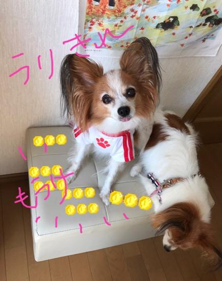 fc2blog_20170918183803261.jpg