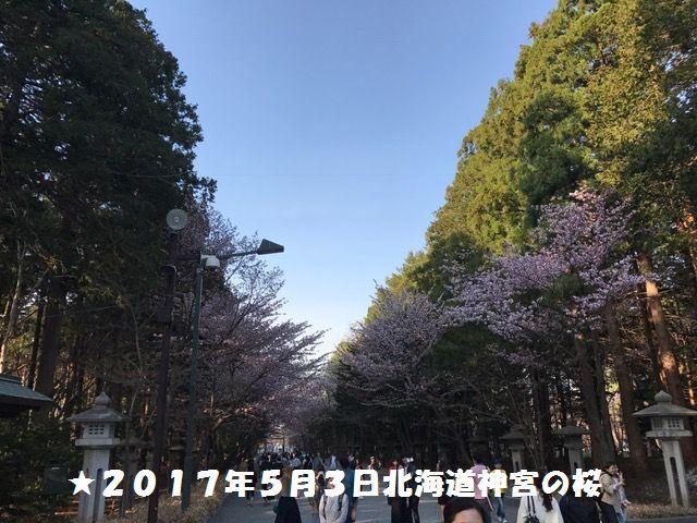 IMG_0454a.jpg
