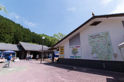 KMGP6219-1.jpg