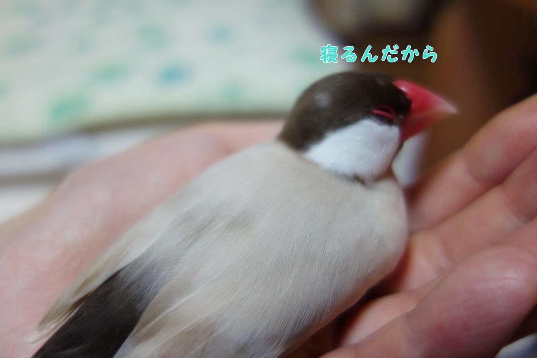 170809-3.jpg
