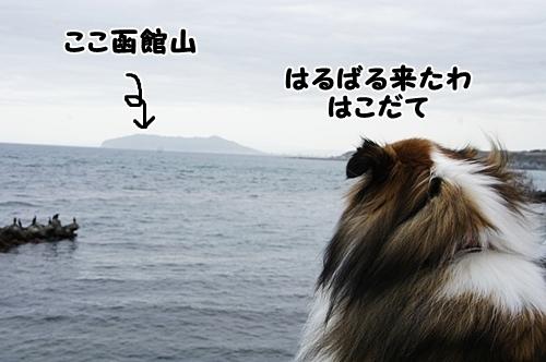 洞爺湖21