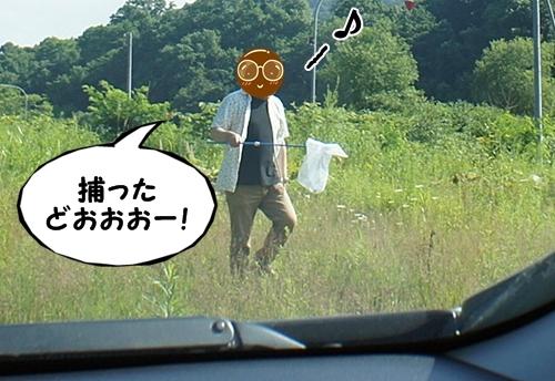 とのさま5
