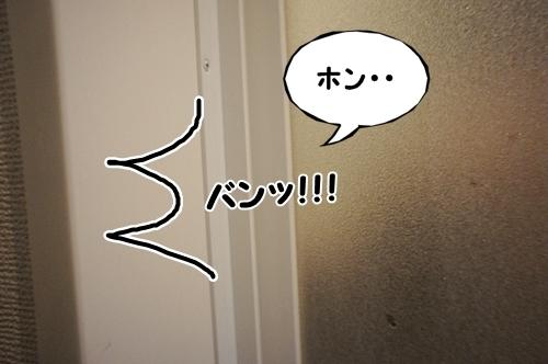 しゃんぷー5