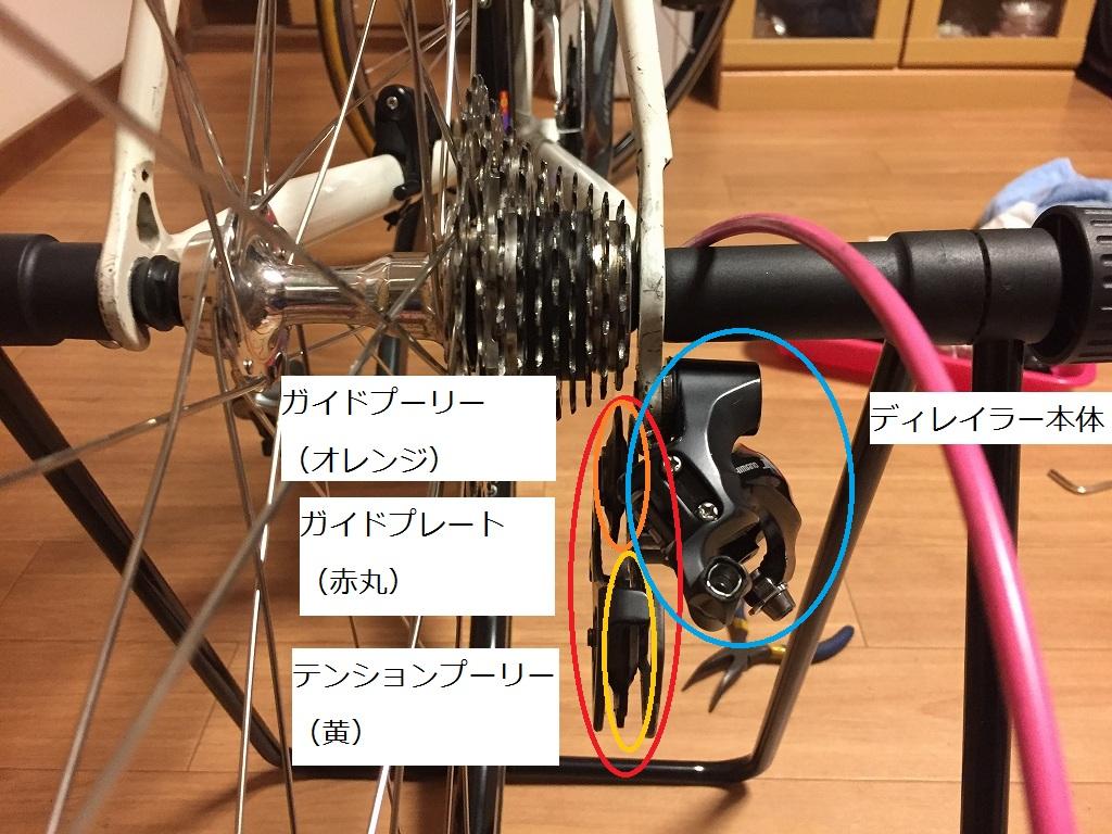 IMG_5858-2.jpg