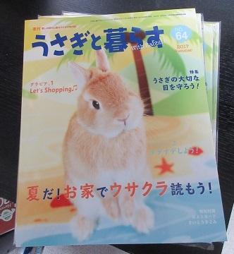 usakura64.jpg