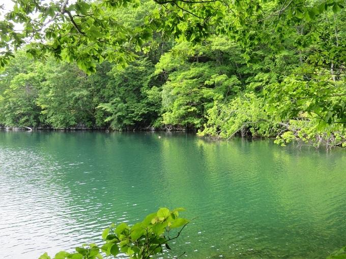 湖面 (2)