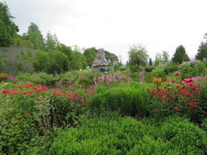 ノームの庭 (7)