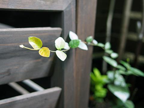 170904-1.jpg
