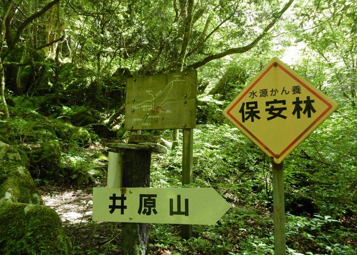 2017,5,14井原山-3