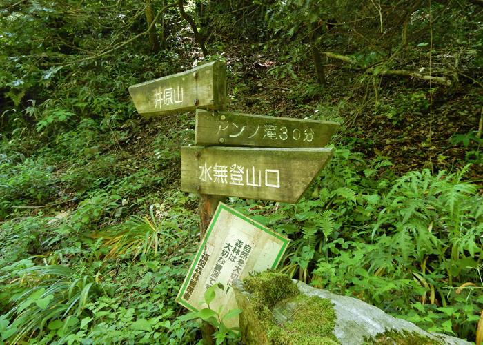 2017,5,14井原山-23