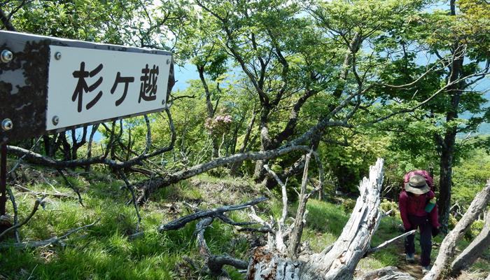 2017,6,傾山縦走-9