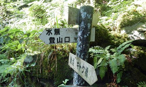 2017,7,29井原山-4