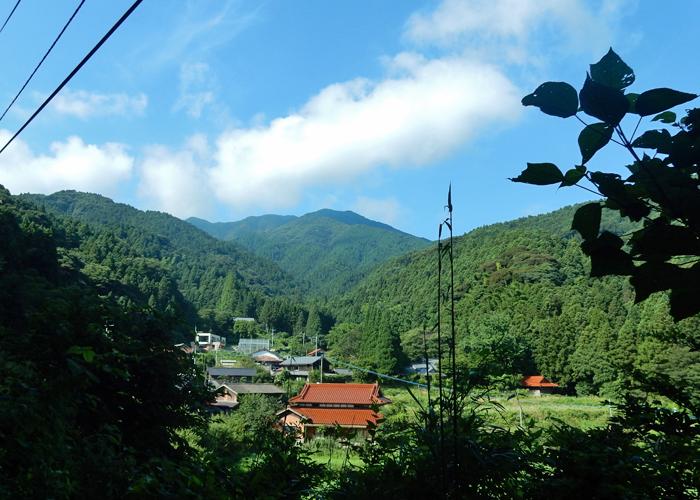 2017,7,29井原山-1