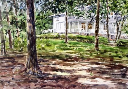 青木邸と木漏れ日