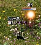 LinC0569.jpg