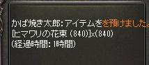 LinC0951.jpg