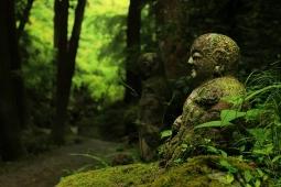 マインドフルネス瞑想と禅5