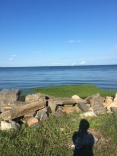 グリニッチビーチ