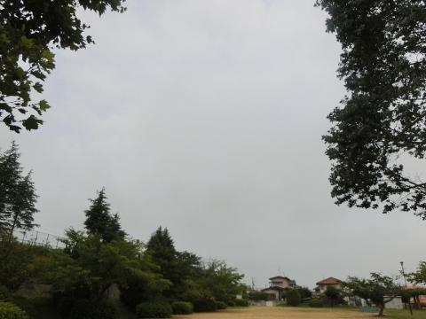 2017-07-06 散歩 005 (480x360)