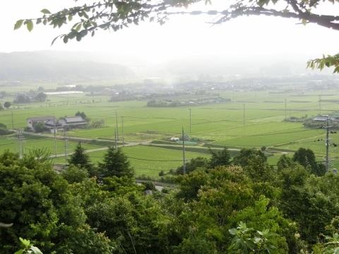 2017-07-08 散歩 002 (480x360)