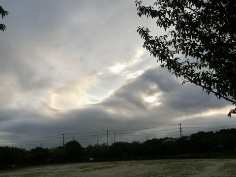 2017-07-26 散歩 004 (480x360)