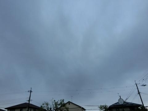2017-07-30 散歩 003 (480x360)