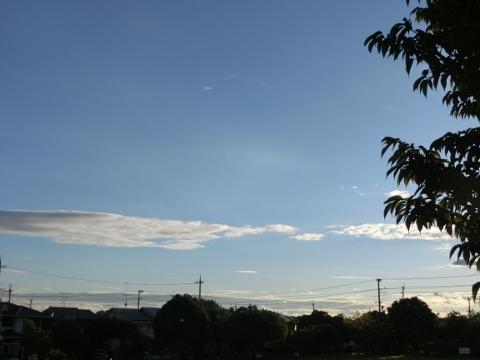 2017-08-03 朝 001 (480x360)
