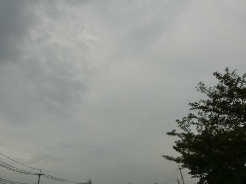 2017-09-07 散歩 008 (480x360)