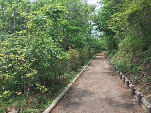 新緑里山4