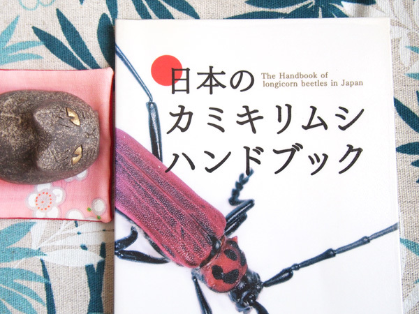 日本のカミキリムシハンドブック