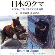日本のクマ