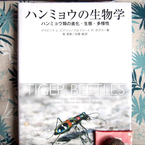 ハンミョウの生物学