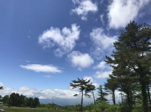 2017-05-30_072153.jpg