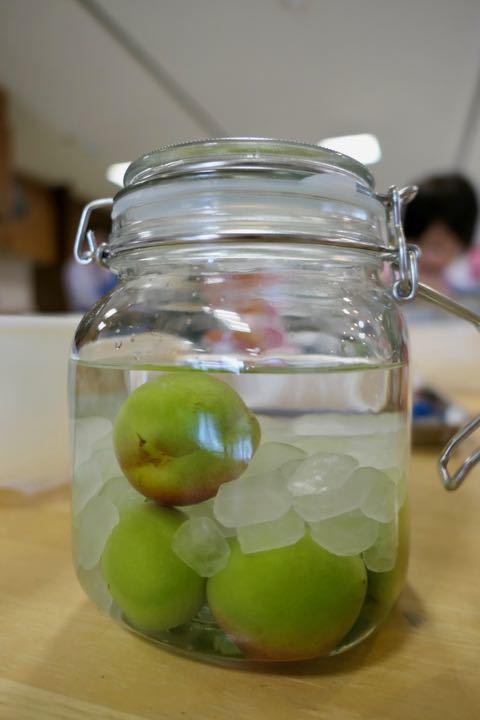 梅酒&梅ジュース - 1 (1)