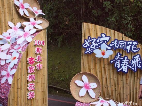 客家桐花祭5