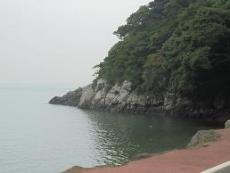 ブログ7海岸べり