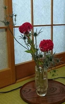 1500455380683花