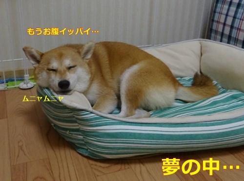 6お疲れ様