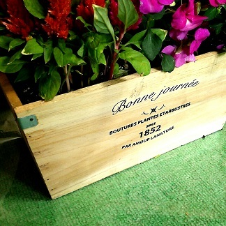 20170513木の箱