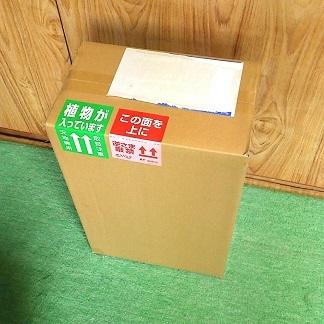 20170513箱