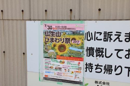 himawari170731-1847.jpg